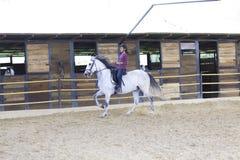 Bello adolescente che monta un cavallo immagini stock libere da diritti
