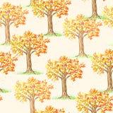 Bello albero di autunno Fotografia Stock Libera da Diritti