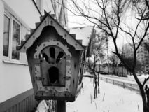 Bello alimentatore di legno del nido per deporre le uova o dell'uccello fotografia stock