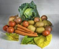 Bello allsorts di verdure Fotografia Stock Libera da Diritti