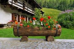 Bello alpien il giardino con il geranio di rosso della piattaforma del contenitore di fiore Fotografia Stock