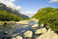 Bello alto Mountain View, tatry in Polonia immagine stock