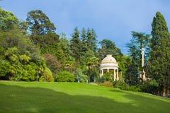 Bello arboreto del parco immagini stock