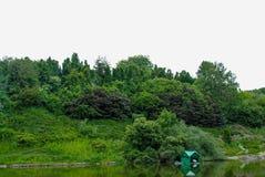 Bello arboreto verde nel parco Sofiyivka immagine stock