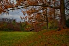 Bello Autumn Colorful Landscape Fotografia Stock