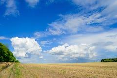 Bello Autumn Field sotto il cielo drammatico Immagine Stock