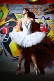 Bello ballo di balletto di dancing della ballerina Fotografia Stock