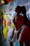 Bello ballo di balletto di dancing della ballerina Immagini Stock Libere da Diritti