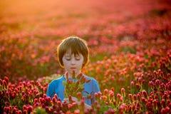 Bello bambino nel campo splendido del trifoglio incarnato sul tramonto, tenuta Fotografia Stock
