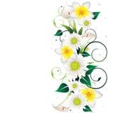 Bello blocco per grafici floreale royalty illustrazione gratis