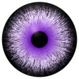 Bello bulbo oculare bianco porpora del nero 3d Halloween illustrazione di stock