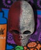 Bello burattino del cranio di colore Immagine Stock