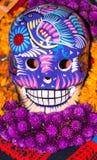 Bello burattino del cranio di colore Fotografie Stock Libere da Diritti