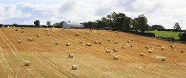 Bello campo con le balle della paglia nell'Irlandese Fotografie Stock