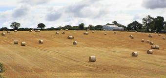 Bello campo con le balle della paglia nell'Irlandese Fotografia Stock