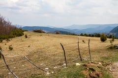 Bello campo con le montagne blu dell'erba nei precedenti e nelle nuvole lanuginose qui sopra fotografia stock libera da diritti