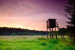 Bello campo verde Immagini Stock Libere da Diritti