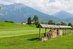 Bello campo verde su un fondo delle montagne Immagini Stock