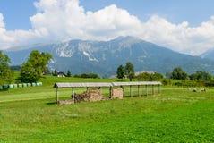 Bello campo verde su un fondo delle montagne Fotografia Stock