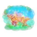 Bello cane sui precedenti dei colori luminosi Immagini Stock