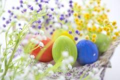 Bello canestro delle uova di Pasqua e dei fiori Immagini Stock Libere da Diritti