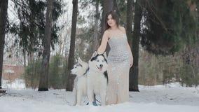 Bello castana in un vestito ed in un husky siberiano stock footage