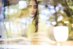 Bello castana in una blusa gialla per continuare istruzione in libri di apprendimento e di lettura dell'università in caffè Immagine Stock Libera da Diritti