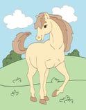 Bello cavallo beige Fotografia Stock Libera da Diritti