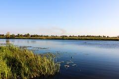 Bello chiaro lago blu e un'alta erba verde Fotografie Stock