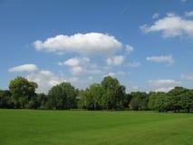 bello cielo blu di verde del campo Fotografie Stock Libere da Diritti