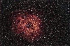 Bello cielo notturno di Rosette Nebula la Rosa di cielo notturno Fotografia Stock