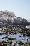 Bello colpo di piccolo lago con le rocce e di chiaro cielo nei precedenti immagini stock