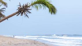 Bello come spiaggia di paradiso video d archivio