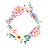 Bello confine della struttura del rombo dell'acquerello con la peonia, fiore, fogliame, rami Fotografia Stock