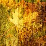 Bello contesto dei fogli di autunno caduti Fotografia Stock