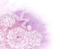Bello contesto floreale orizzontale decorato con le peonie rosa di fioritura all'angolo della risalita Disegnato a mano splendido royalty illustrazione gratis