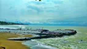Bello corallo coperto di acqua di mare fotografia stock libera da diritti