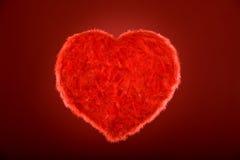 Bello cuore della piuma Immagine Stock