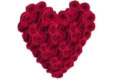 Bello cuore delle rose Fotografie Stock Libere da Diritti