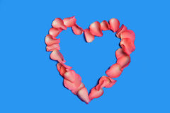 Bello cuore dentellare dei petali di rosa Fotografia Stock Libera da Diritti