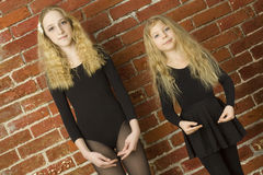 Bello danzatore di balletto della ragazza Fotografie Stock
