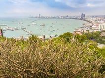 Bello della vista della baia di Pattaya sulla collina di Pratamnak con le sedere del cielo blu Immagine Stock