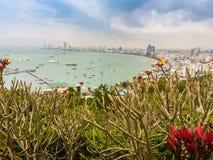 Bello della vista della baia di Pattaya sulla collina di Pratamnak con le sedere del cielo blu Fotografie Stock Libere da Diritti