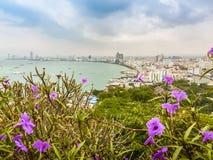 Bello della vista della baia di Pattaya sulla collina di Pratamnak con le sedere del cielo blu Immagini Stock Libere da Diritti