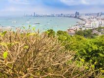 Bello della vista della baia di Pattaya sulla collina di Pratamnak con le sedere del cielo blu Fotografia Stock Libera da Diritti