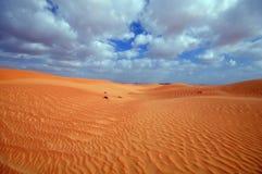Bello deserto Immagine Stock