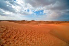 Bello deserto Immagini Stock Libere da Diritti