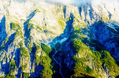 Bello dettaglio delle rocce alpine della montagna coperte di moos il giorno soleggiato Immagini Stock