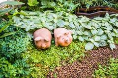 Bello di Clay Pig al forno Immagini Stock Libere da Diritti