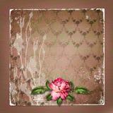 Bello dipinto è aumentato su fondo astratto per la congratulazione Fotografia Stock